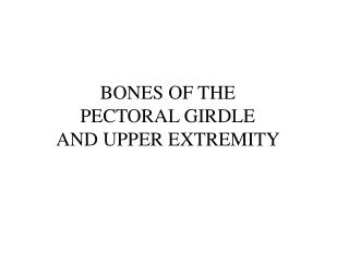 BONES OF THE  PECTORAL GIRDLE  AND UPPER EXTREMITY