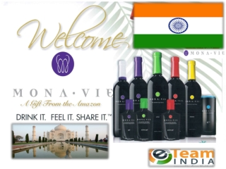 MonaVie Product and Business Presentation