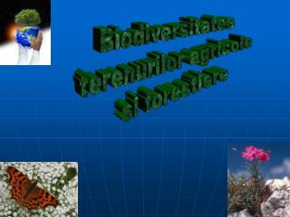 Biodiversitatea  terenurilor agricole  si forestiere