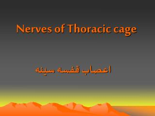 Nerves of Thoracic cage