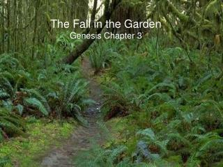 The Fall in the Garden  Genesis Chapter 3