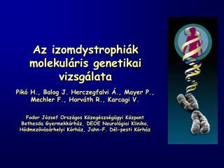 Az izomdystrophi k molekul ris genetikai vizsg lata
