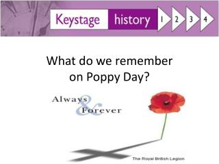 What do we remember on Poppy Day