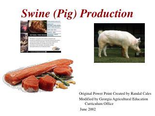 Swine Pig Production