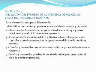 BOLILLA II   2 APLICACI N DEL PROCESO DE AUDITORIA A OTROS CICLOS CICLO  DEL PERSONAL Y NOMINAS