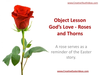 Object Lesson God's Love - Roses and Thorns