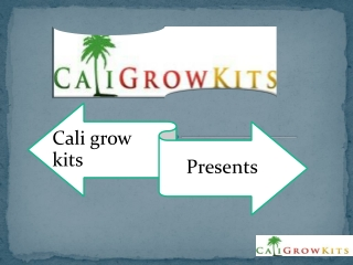 The Best Hydroponic Grow kits and Refills