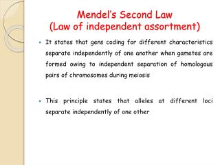 Mendel s Second Law  Law of independent assortment