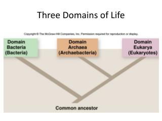 Three Domains of Life