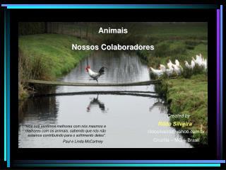 Animais Nossos Colaboradores