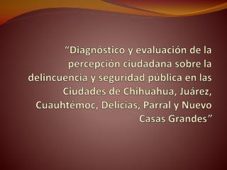 Diagn stico y evaluaci n de la percepci n ciudadana sobre la delincuencia y seguridad p blica en las Ciudades de Chihua