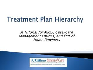 Treatment Plan Hierarchy
