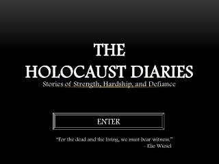 The Holocaust Diaries