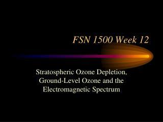 FSN 1500 Week 12