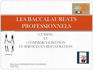 LES BACCALAUREATS PROFESSIONNELS