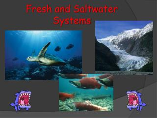 Fresh and Saltwater Systems