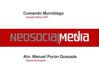 Atn: Manuel Pur n Quesada      Gerente de Proyecto