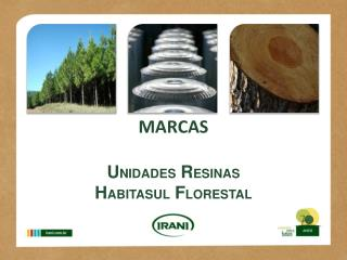 MARCAS   UNIDADES RESINAS  HABITASUL FLORESTAL