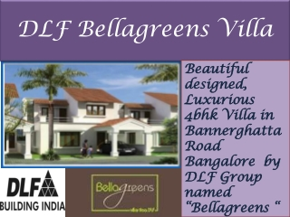 dlf bellagreens bangalore 09999620966
