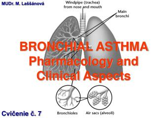 BRONCHIAL ASTHMA  Pharmacology and  Clinical Aspects