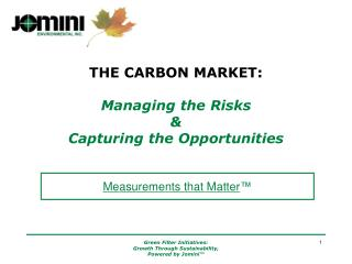 THE CARBON MARKET:   Managing the Risks  Capturing the Opportunities