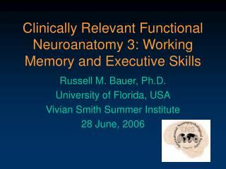 Clinically Relevant Functional Neuroanatomy 3: Working Memory and Executive Skills