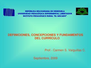 DEFINICIONES, CONCEPCIONES Y FUNDAMENTOS DEL CURR CULO   Prof.- Carmen S. Varguillas C.  Septiembre, 2009