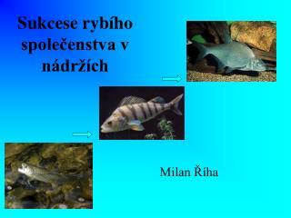 Sukcese ryb ho spolecenstva v n dr  ch
