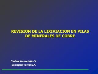 REVISION DE LA LIXIVIACION EN PILAS DE MINERALES DE COBRE
