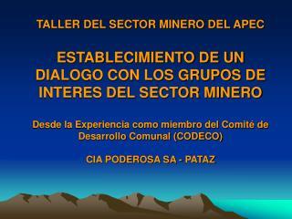 TALLER DEL SECTOR MINERO DEL APEC  ESTABLECIMIENTO DE UN DIALOGO CON LOS GRUPOS DE INTERES DEL SECTOR MINERO  Desde la E