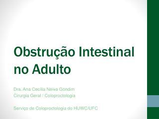 Obstru  o Intestinal no Adulto