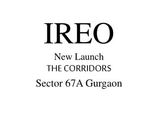 Ireo The Corridors @ 9818721122