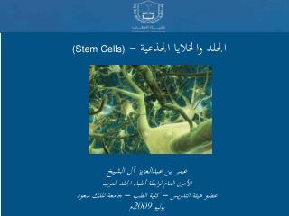 - Stem Cells