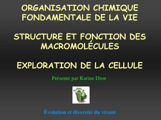 ORGANISATION CHIMIQUE FONDAMENTALE DE LA VIE  STRUCTURE ET FONCTION DES MACROMOL CULES  EXPLORATION DE LA CELLULE