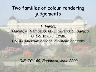Two families of colour rendering judgements