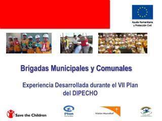 Brigadas Municipales y Comunales   Experiencia Desarrollada durante el VII Plan del DIPECHO