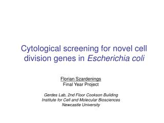Cytological screening for novel cell division genes in Escherichia coli
