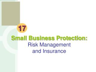 Small Business Protection: Risk Management and Insurance