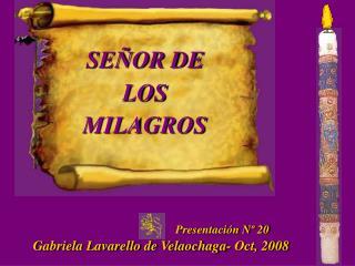 Presentaci n N  20  Gabriela Lavarello de Velaochaga- Oct, 2008