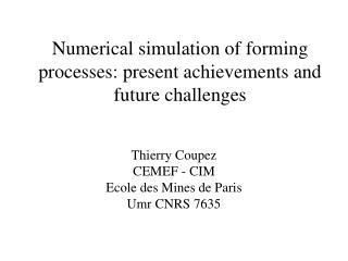 Numerical simulation of forming processes: present achievements and future challenges