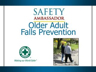 Older Adult  Falls Prevention