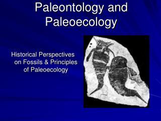 Paleontology and Paleoecology