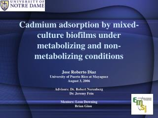 Cadmium adsorption by mixed-culture biofilms under metabolizing and non-metabolizing conditions