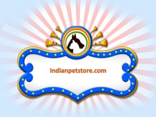 Indianpetstore.com is now available to feed your pets