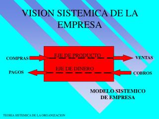 VISION SISTEMICA DE LA EMPRESA
