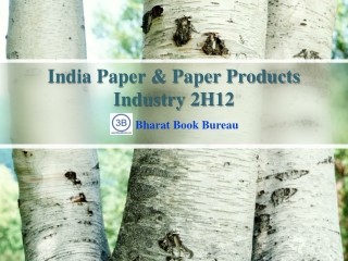 India Paper & Paper Products Industry 2H12