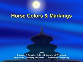 Horse Colors  Markings