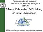 Tennessee Small Business Environmental Assistance Program SBEAP