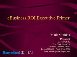 EBusiness ROI Executive Primer