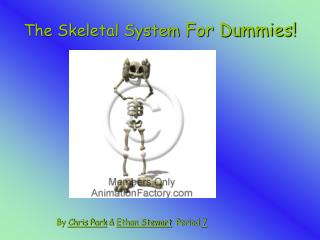 The Skeletal System For Dummies